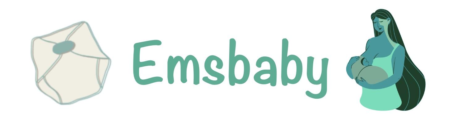 Unternehmertreffen Nordwest Logo Emsbaby